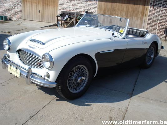 Austin Healey  3000 MKI BT7 2+2 (1960)