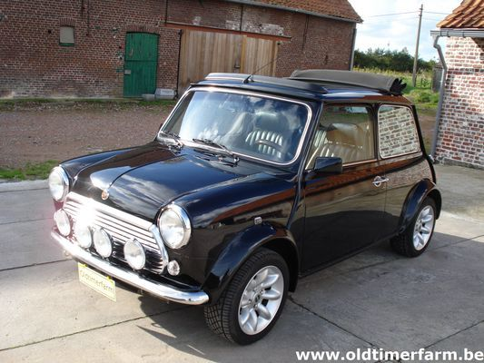 Mini 40 th Anniversary Limited Edition (1999)