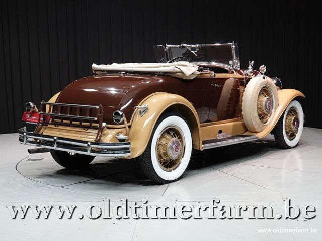 Buick 8/64 Roadster '31 (1931)