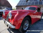 Jaguar XK 120 FHC (1954)